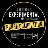 One Year of ExperimentalTech Records (Selected & Compiled By Luis Pitti) by Various Artists