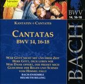 Bach: Cantatas BWV 14, 16-18 by Bach-Collegium Stuttgart