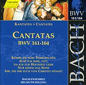 J.S. Bach - Cantatas BWV 161-164 by Bach-Collegium Stuttgart