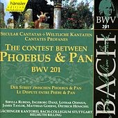 J.S. Bach - The Contest Between Phoebus & Pan BWV 201 by Bach-Collegium Stuttgart
