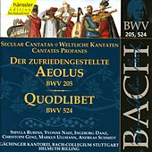 J.S. Bach - Secular Cantata BWV 205 / Quodlibet BWV 524 by Bach-Collegium Stuttgart