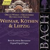 Johann Sebastian Bach: Weimar, Köthen & Leipzig by Bine Katrine Bryndorf