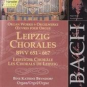 Bach: Leipzig Chorales, BWV 651 - 667 by Bine Katrine Bryndorf