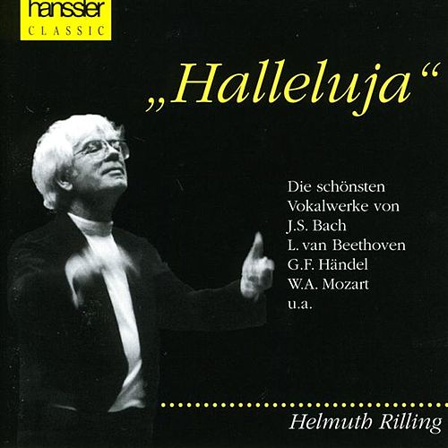 Halleluja von Various Artists