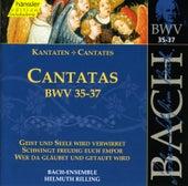 J.S. Bach - Cantatas BWV 35-37 by Bach-Collegium Stuttgart
