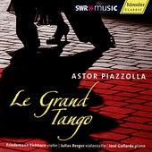 Piazzolla: Le Grand Tango by Friedemann Eichhorn