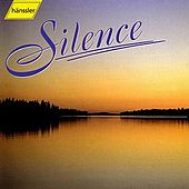 Silence by Haenssler
