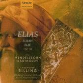 Mendelssohn: Elias, Oratorium Nach Worten Des Alten Testaments Op.70 by Gächinger Kantorei Stuttgart