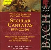 J.S. Bach - Secular Cantatas BWV 202-204 by Bach-Collegium Stuttgart