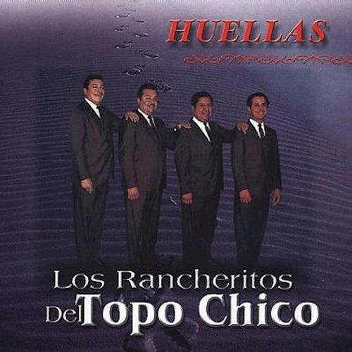 Los Rancheritos del Topo Chico by Los Rancheritos Del Topo Chico