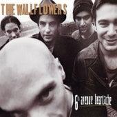 6th Avenue Heartache by The Wallflowers