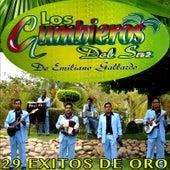 29 Exitos de Oro by Los Cumbieros Del Sur