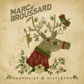 Magnolias & Mistletoe by Marc Broussard