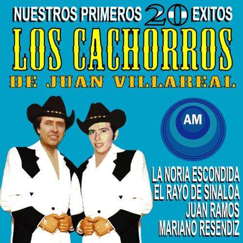 Nuestros Primeros 20 Éxitos by Los Cachorros de Juan Villarreal