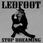 Stop Dreaming by Tim Scott