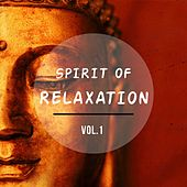 Afterwork Relaxation Tunes, Vol. 1 (Anti Stress Relaxing Meditation Music) by Various Artists