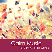 Calm Music for Peaceful Mind - Relaxing Meditation Music & Yoga Sleep Music for Stress Relief and Healing by Calm Music Ensemble