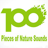100 Pieces of Nature Sounds by Various Artists
