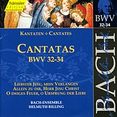 J.S. Bach - Cantatas BWV 32-34 by Bach-Collegium Stuttgart