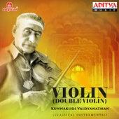Violin (Double Violin) by Kunnakudi Vaidyanathan