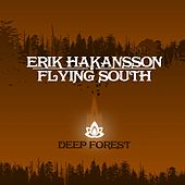 Flying South by Erik Hakansson
