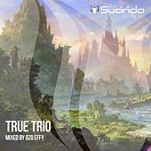 True Trio: Mixed By Ozo Effy - EP by Various Artists