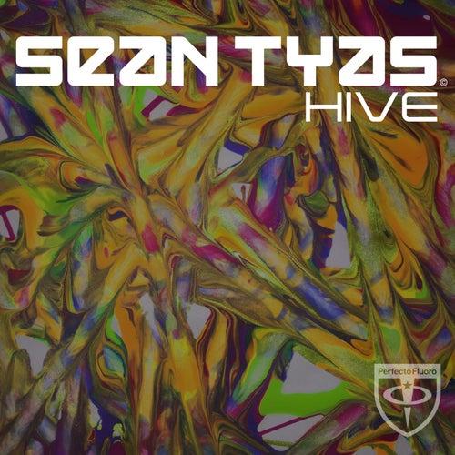 Hive by Sean Tyas