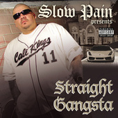Straight Gangsta by Various Artists