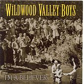 I'm A Believer by Wildwood Valley Boys