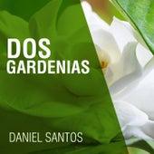 Dos Gardenias by Daniel Santos
