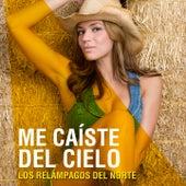 Me Caíste del Cielo by Los Relampagos Del Norte