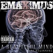 A Beautiful Mind (The Beginning) by Emaximus