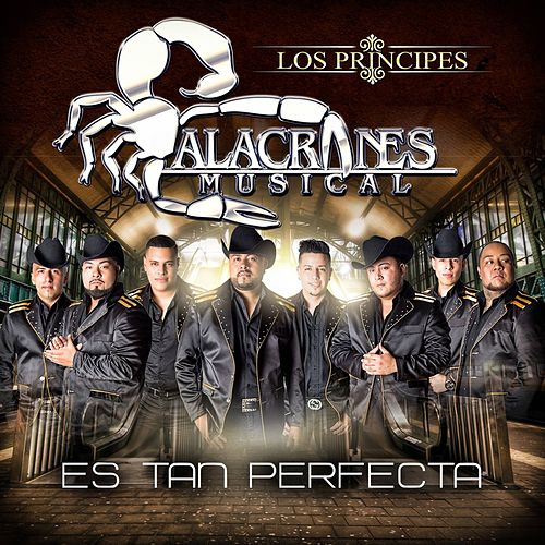 Es Tan Perfecta by Alacranes Musical