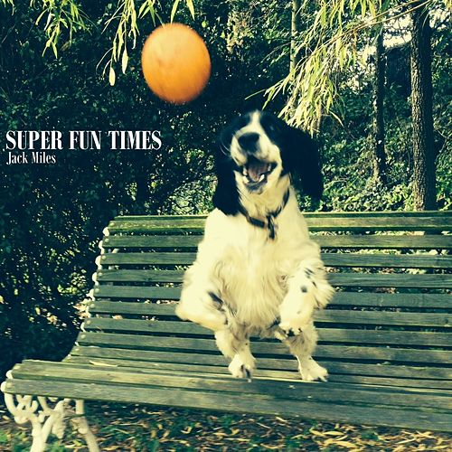 Super Fun Times by Jack Miles