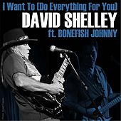 I Want To (Do Everything for You) [feat. Bonefish Johnny] by David Shelley