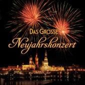 Das große Neujahrskonzert von Various Artists
