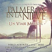 Palmeras en la nieve - Un Viaje Musical. by Various Artists