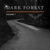 Dark Forest, Vol. 1 by Various Artists