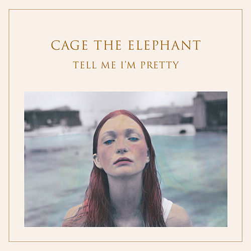 Too Late To Say Goodbye by Cage The Elephant