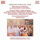 Most Famous Waltzes by Johann Strauss, Jr.