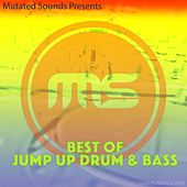 Best of Jump Up Drum & Bass (Compilation Series) by Various Artists