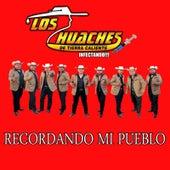 Recordando Mi Pueblo by Los Huaches De Tierra Caliente