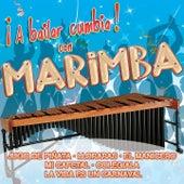 ¡A Bailar Cumbia! con Marimba by Various Artists
