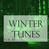 Winter Tunes, Vol. 10 by Various Artists