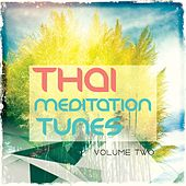Thai Meditation Tunes - Vipassana Session, Vol. 2 (Finest Of Relaxation & Wellness Chill Out Music) by Various Artists