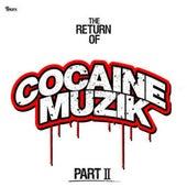 The Return of Cocaine Muzik, Pt. 2 by Various Artists