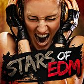 Stars of EDM by Various Artists