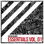 Run Dbn Essentials, Vol. 1 by Various Artists