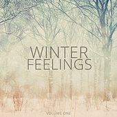 Winter Feelings, Vol. 1 (Hang Out & Chilled Relaxing Music) by Various Artists