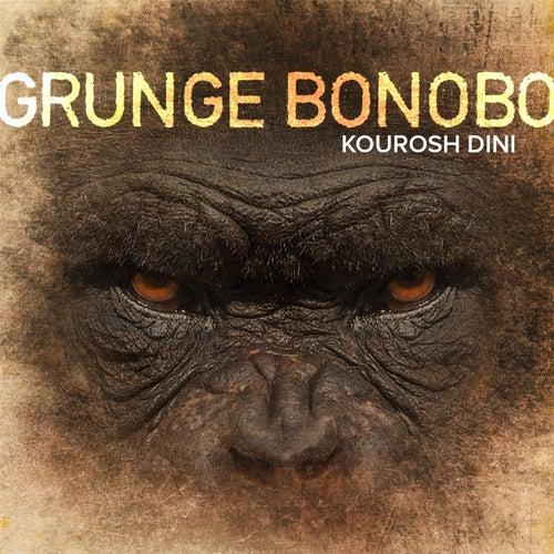 Grunge Bonobo by Kourosh Dini